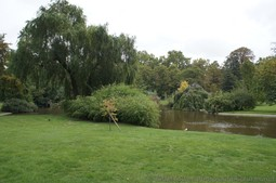 Lush Green Grass & Trees & Pond next to Eiffel Tower.jpg